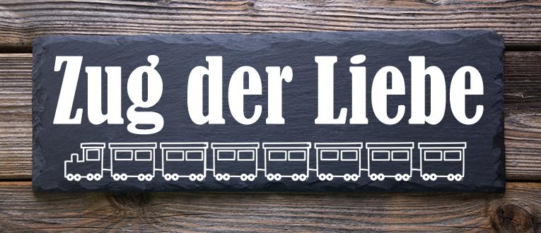 zdl-wagen-header