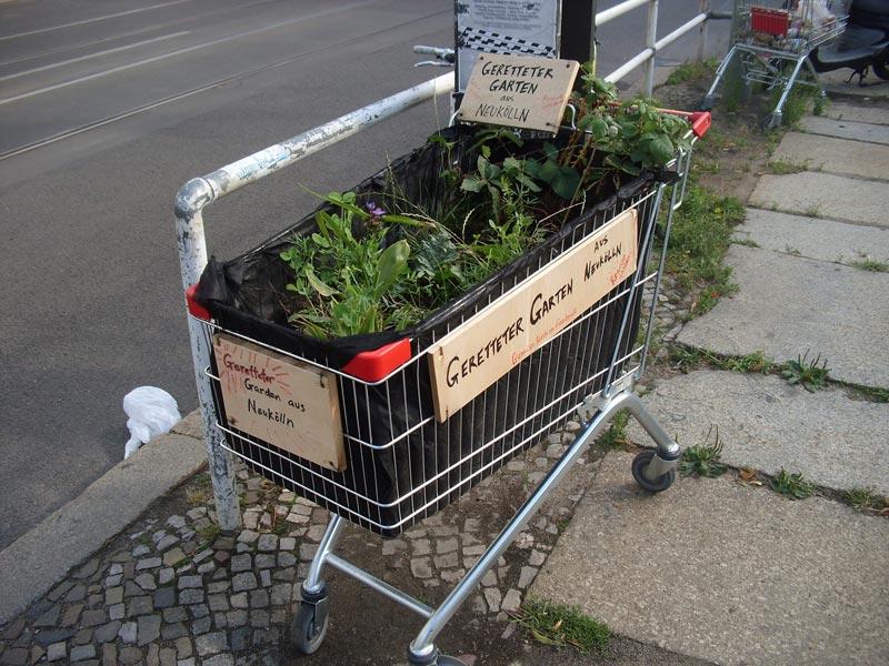 berlin-garten-im-meinkaufswagen