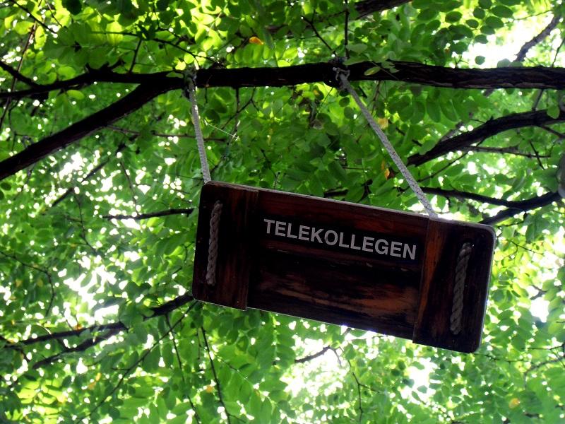 telekollegen