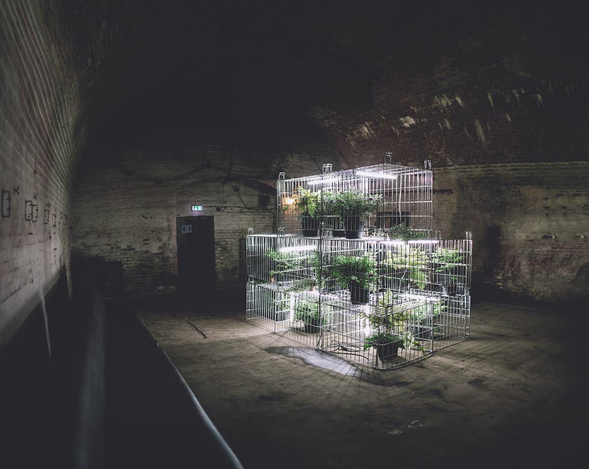 OXYT-warehouse