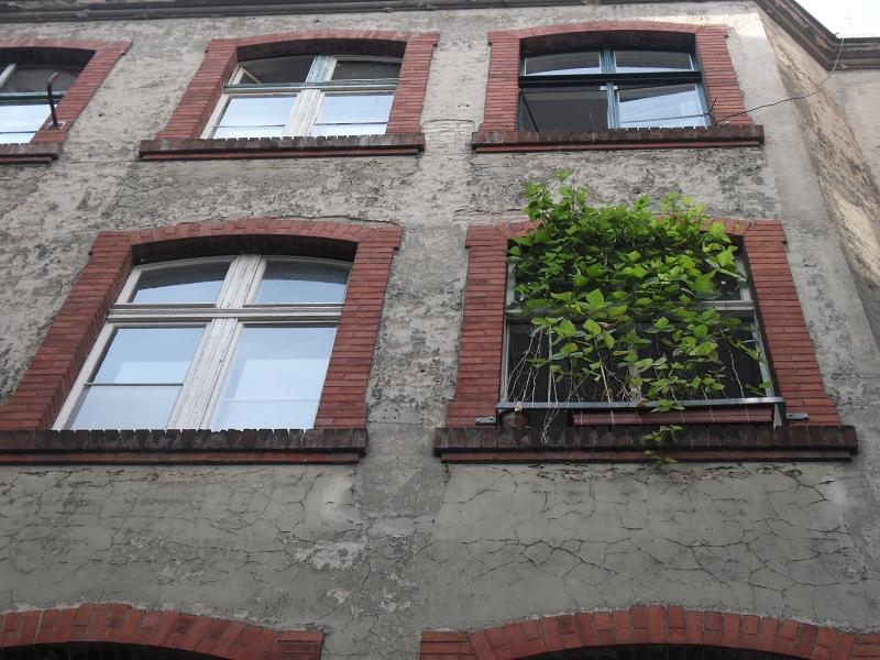 berlin-hinterhof-schoenhauser-allee-41-ontai-11